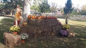 halloween city salina ks boo at the zoo