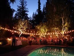 outdoor lights for garden parties designs