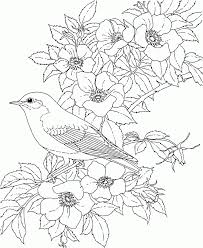 100 flowers coloring pages free printable hearts and roses