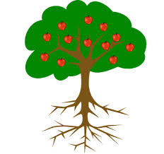 image result for simple tree drawing with roots and fruit