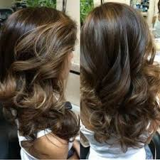 light brown highlights on dark hair dark brown color with subtle light brown highlights love this can t