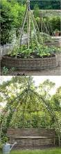 diy trellis arbor 192 best a piece of rainbow diy images on pinterest gardening