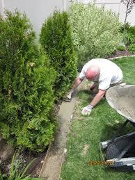 diy curbing for the backyard palehose9