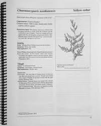 native plants of alaska medicinal flora of the alaska natives a compilation of knowledge