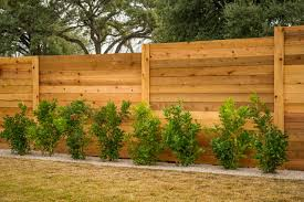 Fence Line Landscaping by How To Care For A Wood Fence Drought Tolerant Plants Privacy