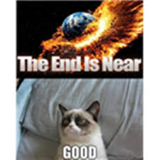 Meme End Of The World - grumpy cat meme end of the world meme lol lulz cat roblox
