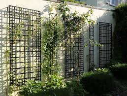 Trellis Garden Ideas Trellis Garden Best 25 Metal Trellis Ideas On Pinterest Metal