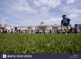 trafalgar square transformed as a green space 2 000 square metres