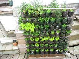 how to design vertical gardens for tiny spaces pvc pipe vertical
