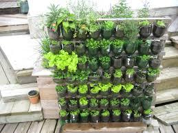 emejing vegetable garden design ideas pictures rugoingmyway us