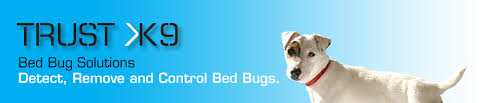 What Do Bed Bugs Eat What Do Bed Bugs Eat U2013 Trust K9