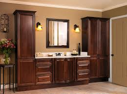 Bathroom Cabinets Ideas Storage Uncategorized Amusing Bathroom Cabinet Ideas Terrific Brown