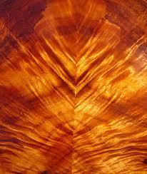 hawaiian koa wood flooring hawaiian curly koa flooring houzz