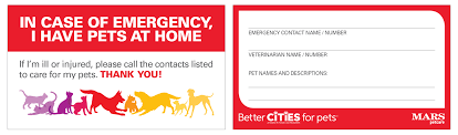 in of emergency who cares for your pets a pet alert card