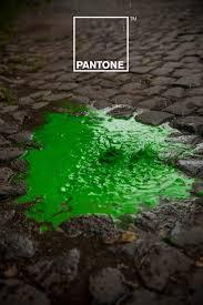 205 best pantone images on pinterest colors pantone color and