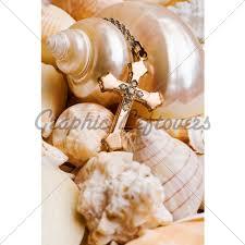 rename and resize seashell wallpaper