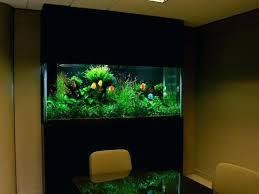 aquarium decoration ideas freshwater fish tank decoration ideas peculiar look with fish aquarium