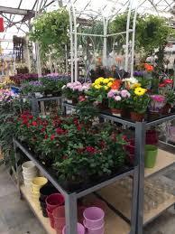 83 best plant layout retail images on pinterest garden centre