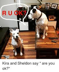 Ru Ok Meme - r u ok kira and sheldon say are you ok meme on me me
