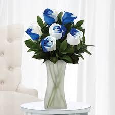 Dark Purple Vase Blue And White Roses