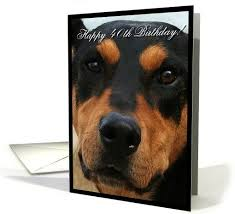 119 best greeting cards for occassions images on