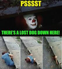 Lost Dog Meme - penny wise pick up lines dog week a tiger leo event imgflip