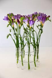 single stem vases 36 best test tubes images on pinterest test tubes bud vases and