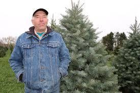 twinsberry tree farm is a u0027people u0027s choice u0027 farm and dairy