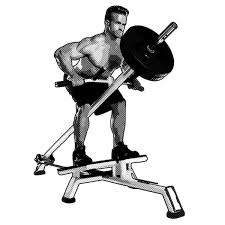 pull your way to a thicker back with these 5 row variations