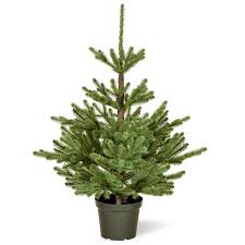 potted artificial christmas trees porch the christmas decor