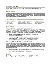 It Resumes Samples Top Essay Writing Cv Samples For Procurement Managers