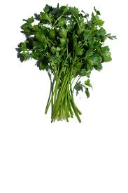 super restorative decollete and neck concentrate neck decollete parsley