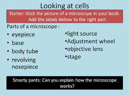 gcse biology crossword pack on cells and biochemistry by