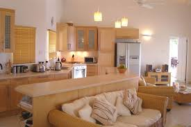 Style  Cozy Living Room Kitchen Best Space For A Small Kitchen - Kitchen and living room colors