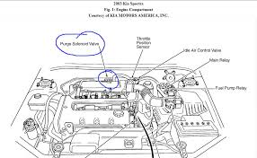 engine diagram 2003 kia rio engine wiring diagrams instruction