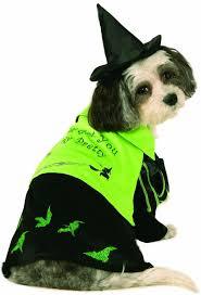 halloween costume wizard 122 best haunting halloween pet costumes images on pinterest pet