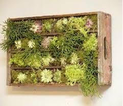 Diy Vertical Pallet Garden - best 25 pallet garden box ideas on pinterest planting outdoor