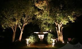 tree up lighting at entryway uplights at entrance columns