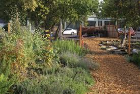 singer hill cafe backyard garden