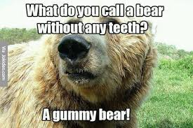Meme Bear - what do you call a bear without any teeth meme