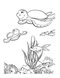 ocean coloring pages getcoloringpages com