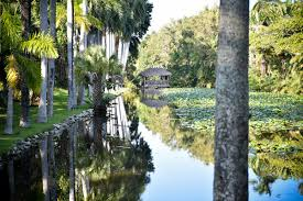 fort lauderdale wedding venues real florida wedding ferguson and langlois at