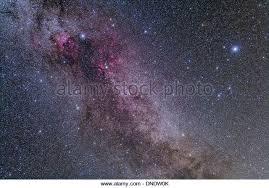 cygnus constellation stock photos u0026 cygnus constellation stock