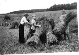 K Hen Ausstellungsst Ke Bilder Und Bildquellen Im Geschichtlichen Heimat Und