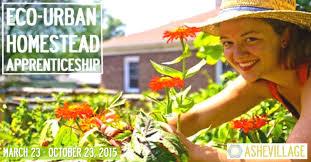 eco urban homestead apprenticeship asheville nc