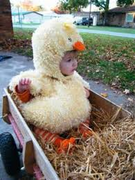 Goose Halloween Costume Twin Baby Costume Baby Chickens Twins Costumes