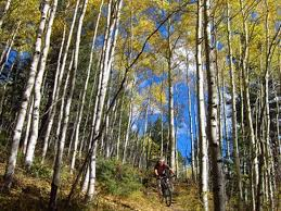 10 ski country hikes with spectacular fall foliage deep creek