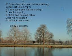 emily dickinson biography death emily dickinson quotes biography online