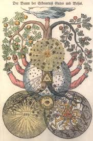 biblische ausbildung the tree of the knowledge of and evil