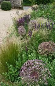710 best ornamental grasses and landscape grasses images on